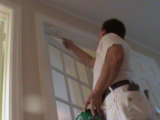 Interior Painters in Edison Park Aardvark Painting Inc.